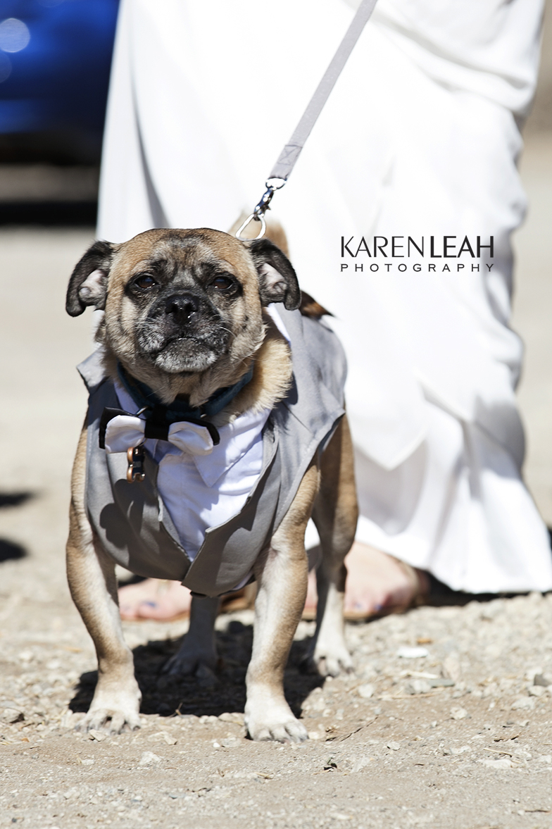 Ventura_Wedding_Photographer_004